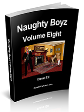 naughty Boyz volume eight cover pic